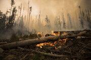 Lesný požiar pozdĺž cesty asi 20 km juhozápadne od Fort St James v Britskej Kolumbii v stredu 15. augusta 2018.