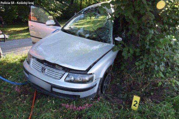 Volkswagen skončil v strome.