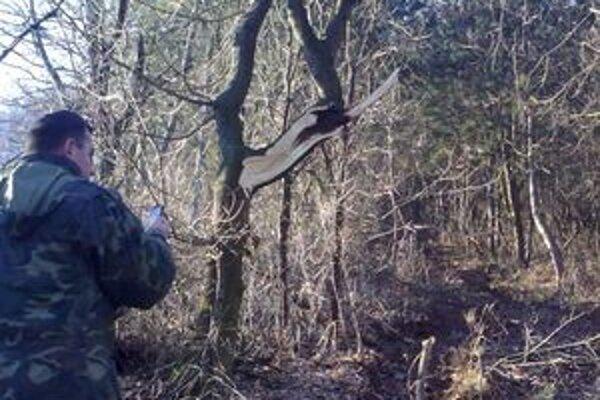 Pracovný stroj za sebou nechal sedemnásť poškodených stromov v chránenej krajinnej oblasti.