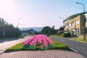 Hviezdoslavova ulica by mala zakvitnúť už na jar 2022.