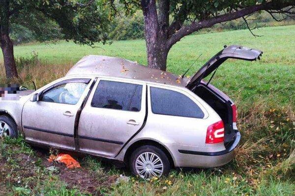 V aute sa zranili traja ľudia.