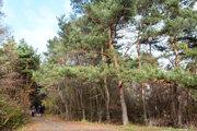 Časť vlastníkov pozemkov pod lesoparkom nad Popradskou sa rozhodla súhlasiť s cenou necelých 70 eur za štvorák.