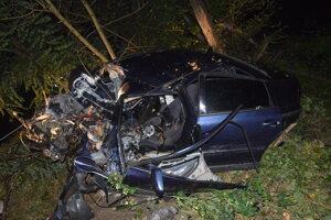 Život 29-ročného vodiča vyhasol po náraze do stromu.