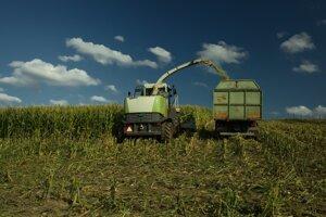 V Turci sa kukurica pestuje na približne štyroch tisícoch ha pôdy.