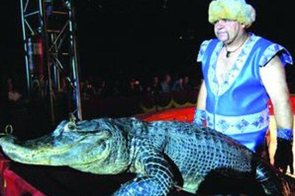 V Cirkuse Alex uvidíte aj unikátnu krokodíliu šou.