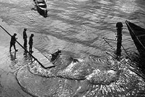 """Josef Sudek neznámyVýstava predstaví jedinečný súbor """"salónnych"""" originálnych fotografií (vintage prints) špičkovej kvality z doby pred rokom 1930, než sa Sudek naplno priklonil k novej vecnosti. Väčšia časť týchto fotografií sa zasielala na medzinárodn"""