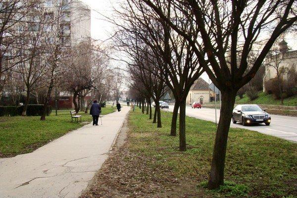 Cyklistickú cestu by mali začať stavať v druhej polovici septembra.