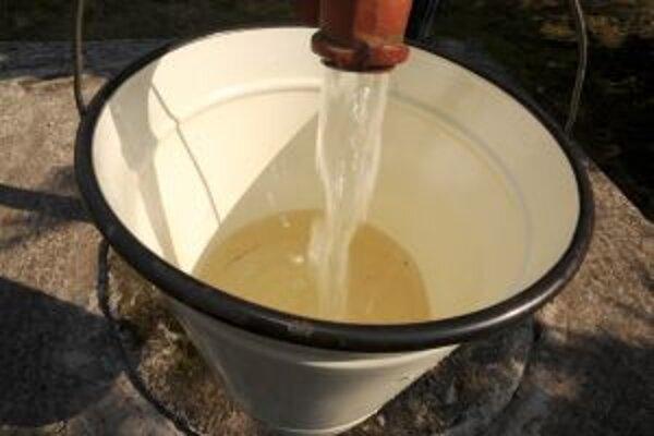 Voda zo studní na polievanie vyhovuje.