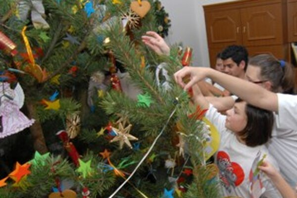 Približne sedem percent Slovákov sa vyjadrilo, že si tento rok vianočný stromček zaobstará v lese alebo záhrade
