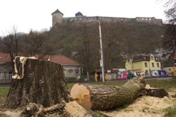 Storočný strom vyrúbali pred tromi rokmi.