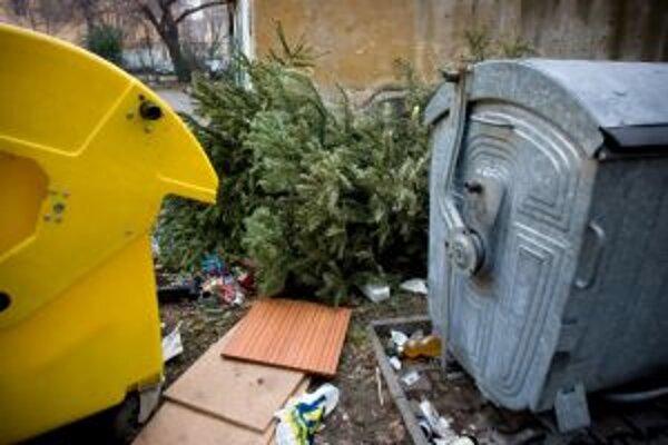 Po skončení vianočných sviatkov sa vianočný stromček zmenil na nepotrebný odpad.