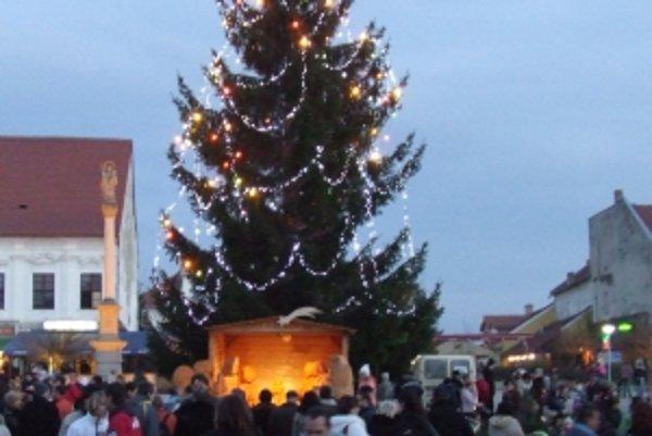 Novomešťania dúfajú, že vianočný smrek sa podarí zachrániť a bude ozdobený aj ďalšie Vianoce.