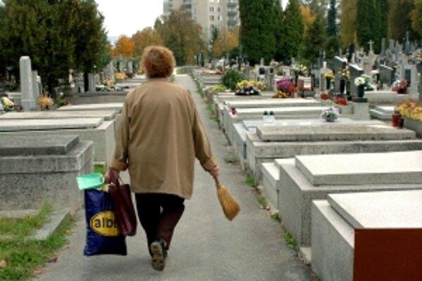 CIntoríny v Trenčíne sú skoro plné.
