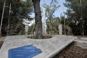 Olivový strom, ktorý si v parku vysadil Juan Antonio Samaranch.