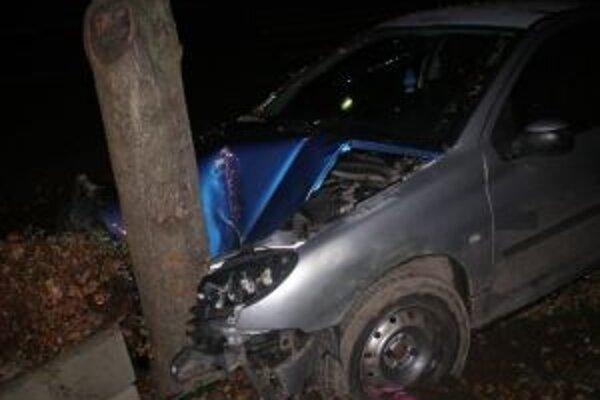 Vodič narazil do betónovej tvárnice a stromu vedľa cesty.