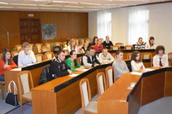 V Topoľčanoch funguje mládežnícky parlament už od roku 2007.