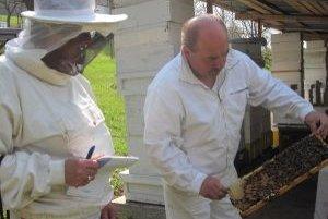 Anka a Miroslav pri práci so včelami.
