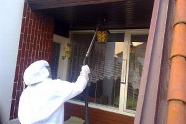 Sršne a včely dokážu niekedy poriadne znepríjemniť život obyvateľom domov.