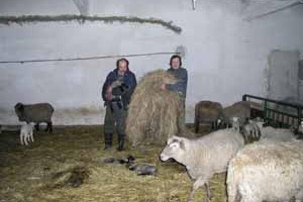 Barančeky z Kysúc sa už v minulosti stali vývozným artiklom.