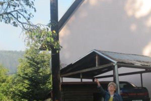 Štefánia Jalůvková hovorí, že stĺp elektrického vedenia poškodil ďateľ, svoje urobilo aj počasie.
