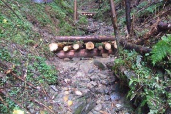 Hrádze a stupne z prírodných materiálov majú aspoň čiastočne zabrániť záplavám.