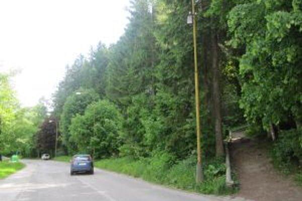 Lesopark Lány je obľúbeným miestom rekreácie a oddychu.