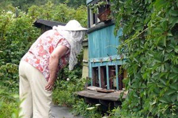 Elena Kubínová z Čadce sa včeláreniu venuje už viac ako tridsať rokov.