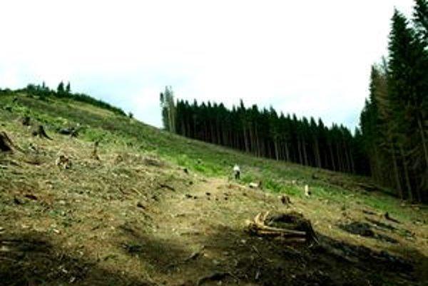 Zdravé kysucké lesy sú už dávnou minulosťou.