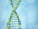 Dvojzávitnica DNA.