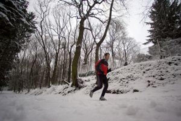Ľudia musia pri Horskom parku prestupovať. Na zastávke, kde nie je ani prístrešok.