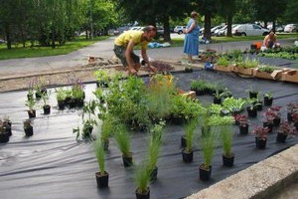Nefunkčné chátrajúce pieskoviská dostali nové využitie, stala sa z nich okrasná záhrada.