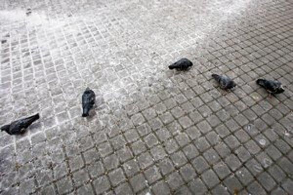 Na cestách a chodníkoch sú tony soli.