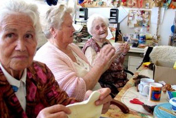 Mesto má sedem zariadení pre seniorov, napríklad Domov Archa na Kramároch.