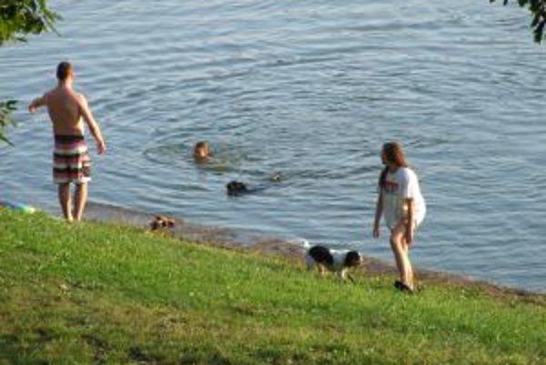 Novobanský Tajch. Niektorí si v ňom radi zaplávajú aj so svojimi domácimi miláčikmi.