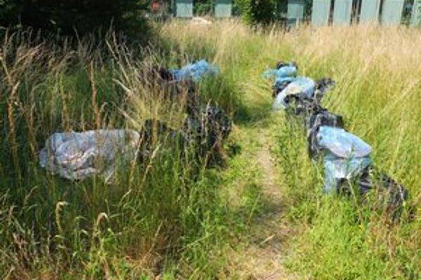 Na pilotnej akcii vyzbierali 38 vriec odpadu.