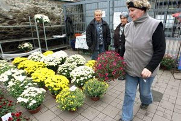 Kvety nakupujú mnohí Bratislavčania pred cintorínom.