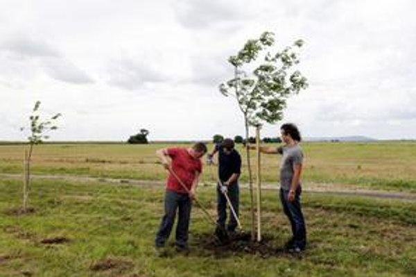 Pri Rusovciach a Jarovciach má pribudnúť  300 ovocných stromov, ktoré majú dropom slúžiť na ochranu a ako potrava.