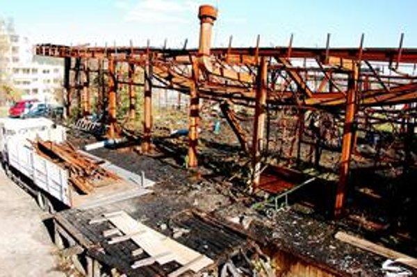 Obhorené zvyšky tlačiarní začali postupne odvážať preč. Celý pozemok robotníci vyčistia asi za mesiac.