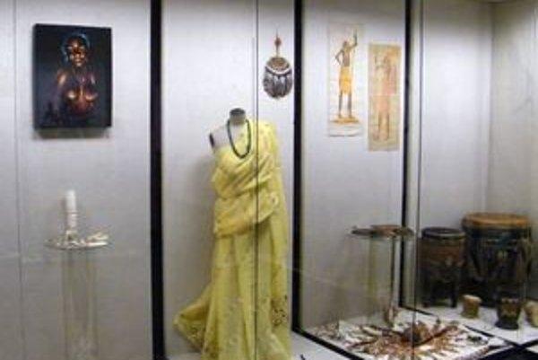 Na výstave uvidia návštevníci exotický hmyz, aj oblečenie domorodcov.