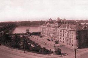 Chodil som denne pešo so psom Pedrom na druhú stranu Dunaja ku koníčkom.