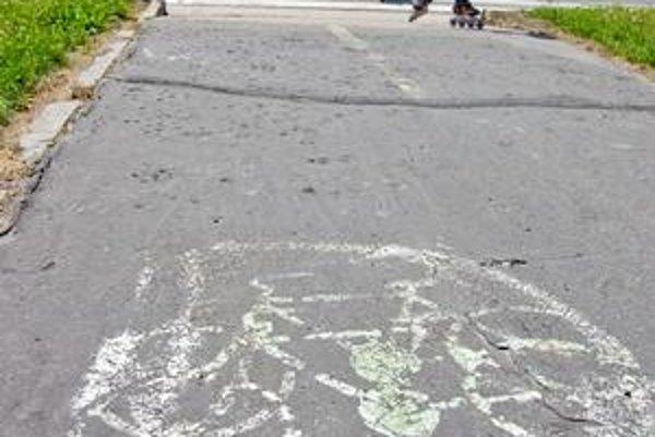 Cyklistická trasa na Dolnozemskej ulici je zelenou cestou. Má 4,5 kilometra.