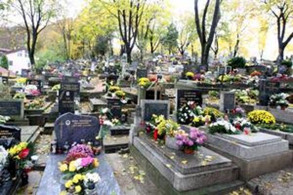 Súčasný dúbravský cintorín je plný. V jeho blízkosti chce Dúbravka vystavať urnový háj. Mestskej časti má pribudnúť 1800 miest. Spravovať ho chce sama.