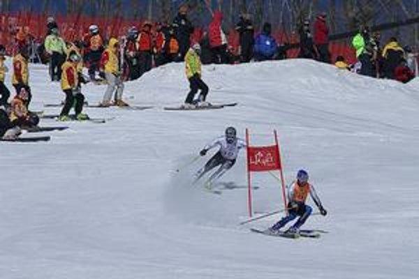 Pri súťažiach zrakovo postihnutých lyžiarov je veľmi dôležitá súhra športovca s navádzačom. Na snímke spolupracujú Martin Pavlák a pretekár Michal Beladič.