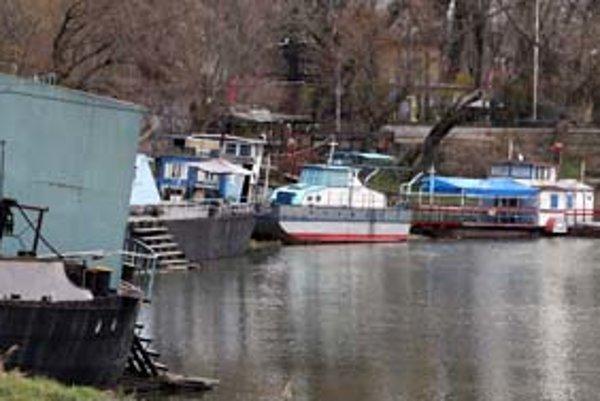 Pozemky v Karloveskom ramene, kde je lodenica, by v budúcnosti mali vyzerať inak. J&T chce územie zveľadiť a postaviť tu novú lodenicu. Vodáci sú však proti návrhu, pokiaľ sa lepšie nevyrieši prístup k vode.