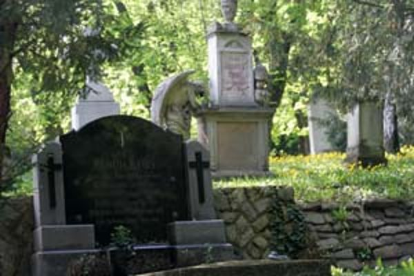 Cintorín pri Kozej bráne založili v roku 1783. Pochovaní sú tu známi prešporskí umelci, mecenáši aj šľachtici. Medzi najkrajšie patrí hrobka rodiny baróna Jeszenáka.