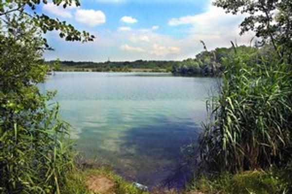 V Bratislave neexistuje oficiálna nudapláž, nudisti využívajú odľahlé zákutia prírodných jazier.