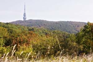 Mesto dalo vypracovať urbanistickú štúdiu na bratislavský lesopark, ktorý zasahuje do viacerých mestských častí. Štúdia má byť podkladom na rozvoj tejto rekreačnej oblasti.