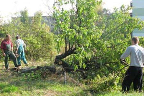 Obyvatelia Bieleho kríža sa snažili v sobotu zabrániť výrubu stromov.