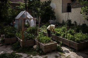 Mobilná záhrada na Sasinkovej ulici