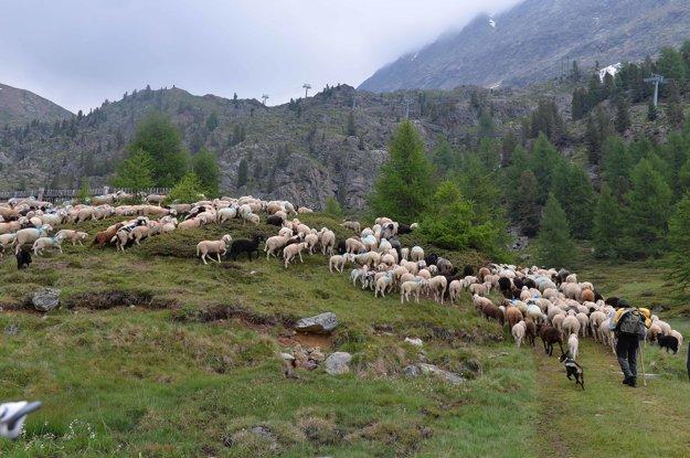 Tirolsko sa rozdelilo po prvej svetovej vojne. Južná časť sa stala súčasťou Talianska.